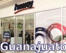 shop ubicada en guanajuato
