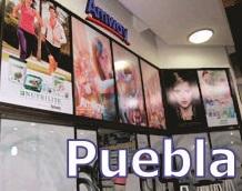 tienda de amway en la ciudad de puebla